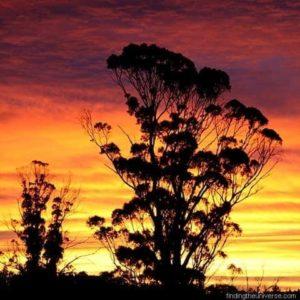Highlights of Tasmania