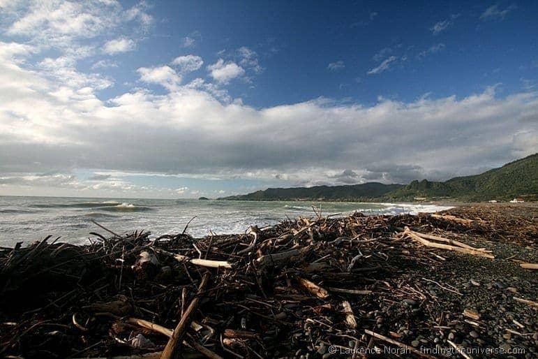 Driftwood coated beach