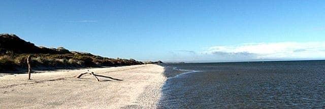 Farewell Spit Beach