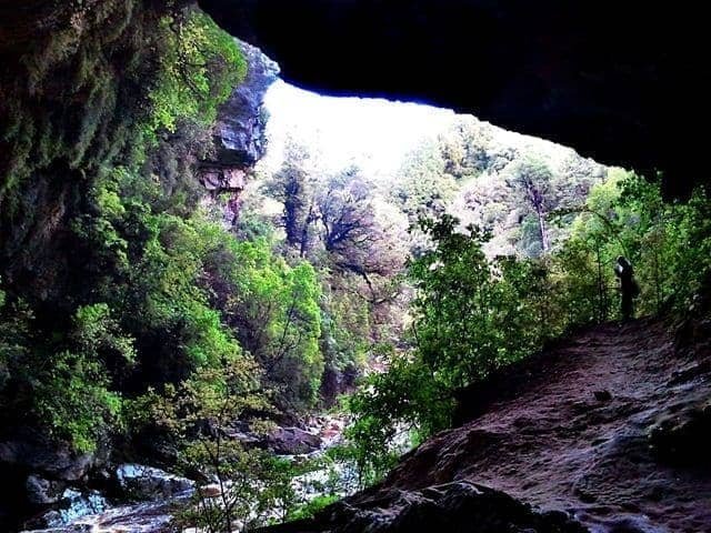 Inside the Oparara Arch