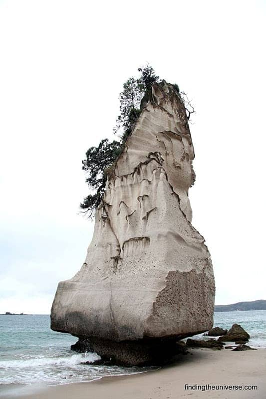 Awesome looking rock at Cathedral Cove - Coromandel Peninsula