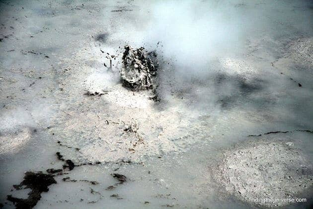 Bubbling mud pools near Wai-o-tapu thermal reserve - Rotorua 2