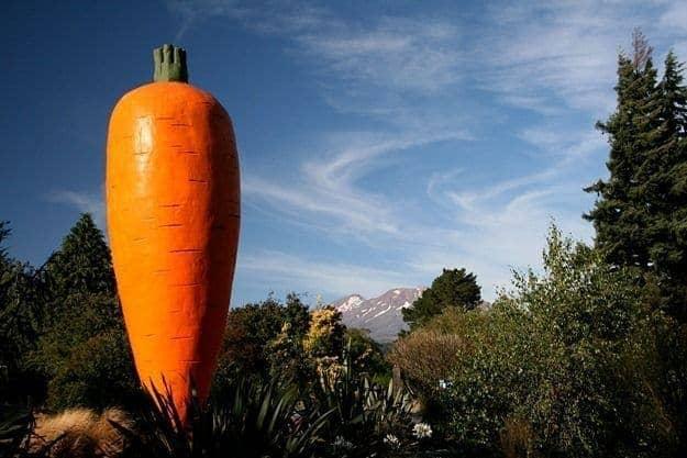 Giant Carrot of Ohakune