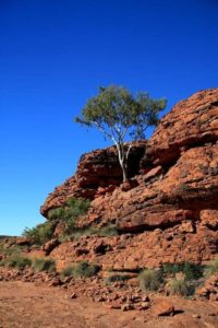Visiting Kings Canyon in Australia