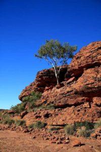 Visiting Kings Canyon in Australia