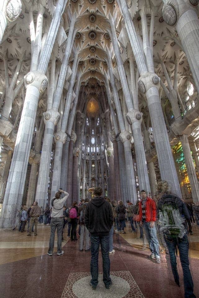 sagrada familia you are not alone.png