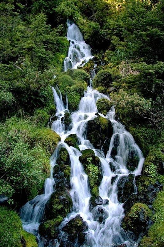 Waterfall next to Waitonga #TravelPinspiration
