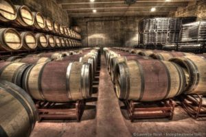 Wine-tasting for beginners (or how to alienate the masters of wine)