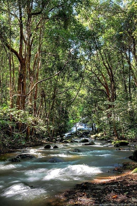 Doi Inthanon river