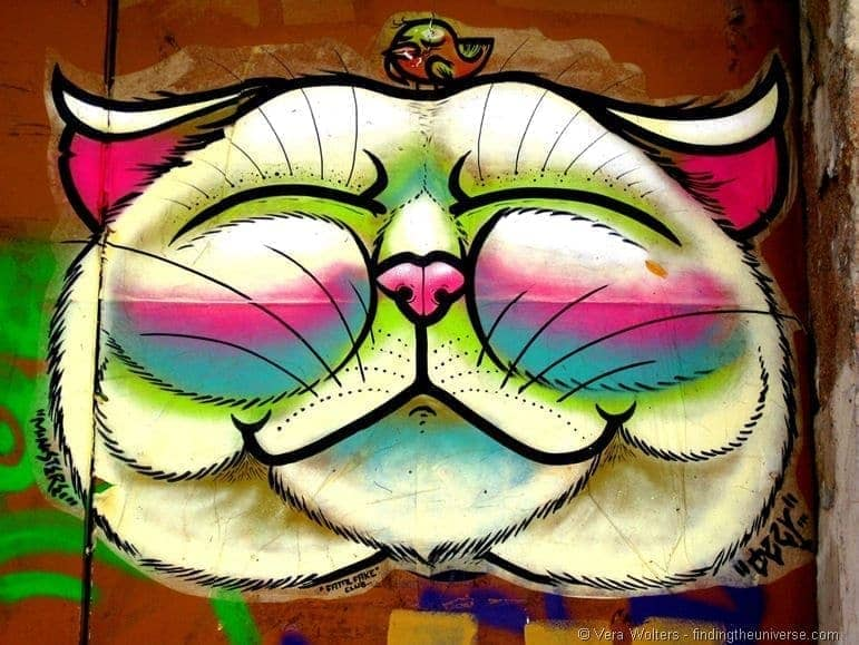 Smiling cat street art Barcelona