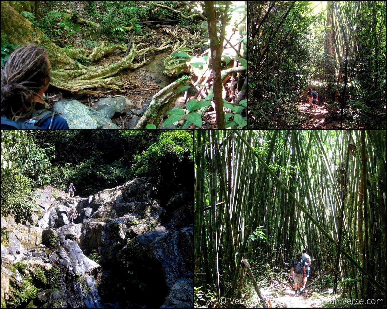 Khao Sok collage 1