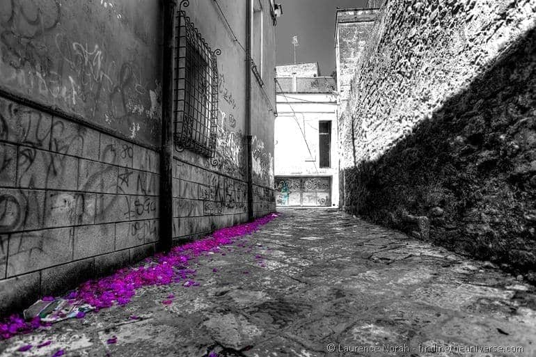 Brindis back streets flower petals black and white