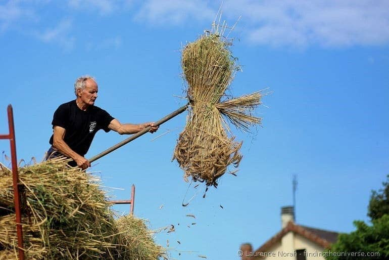 Man throwing wheat with pitchfork