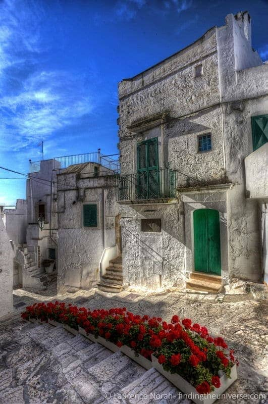 Red roses white city ostuni scaled