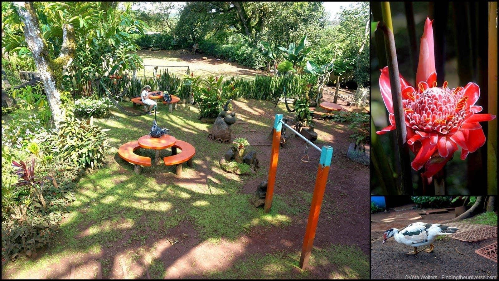 Garden El Ceibo, San Cristobal,Galapagos