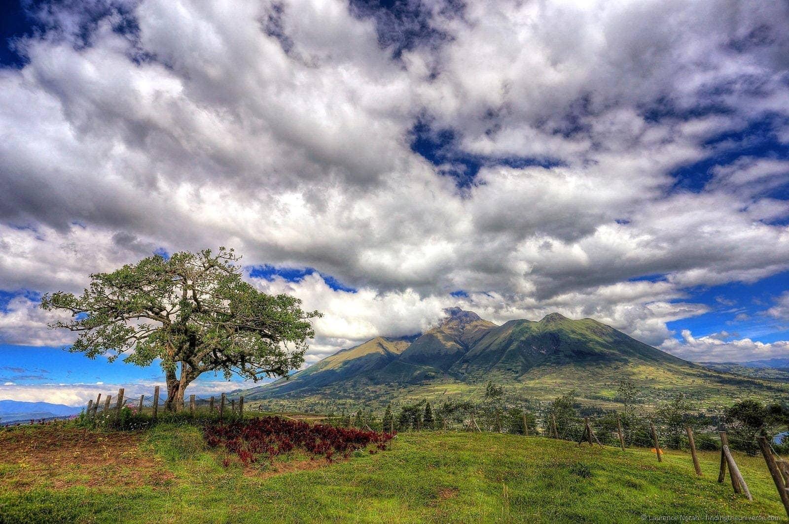 Otavalo sacred tree el lechero