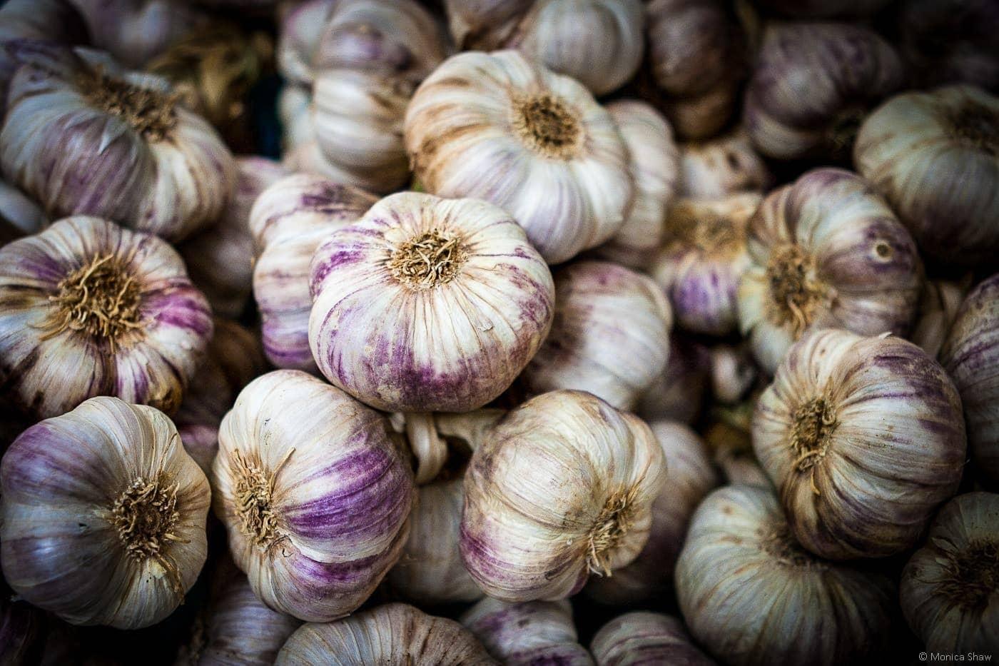 Garlic at Nérac Market
