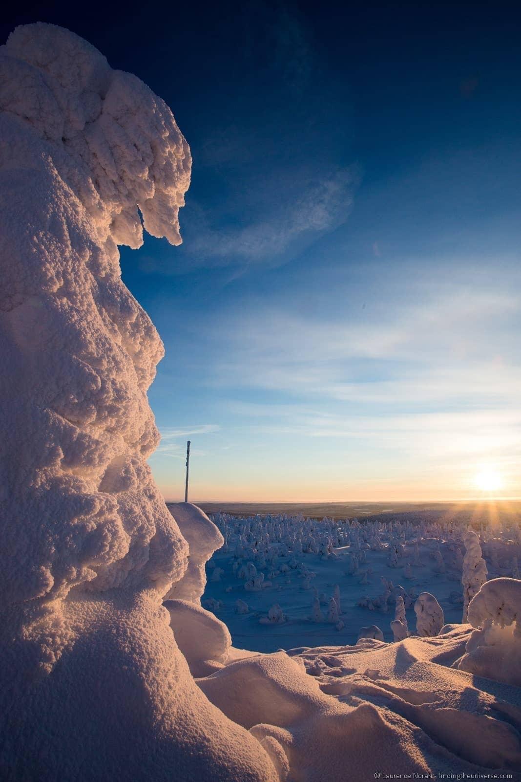 frozen tree iso syote finland lapland