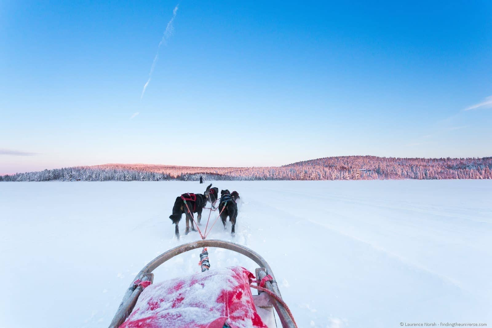 view from husky sled finland