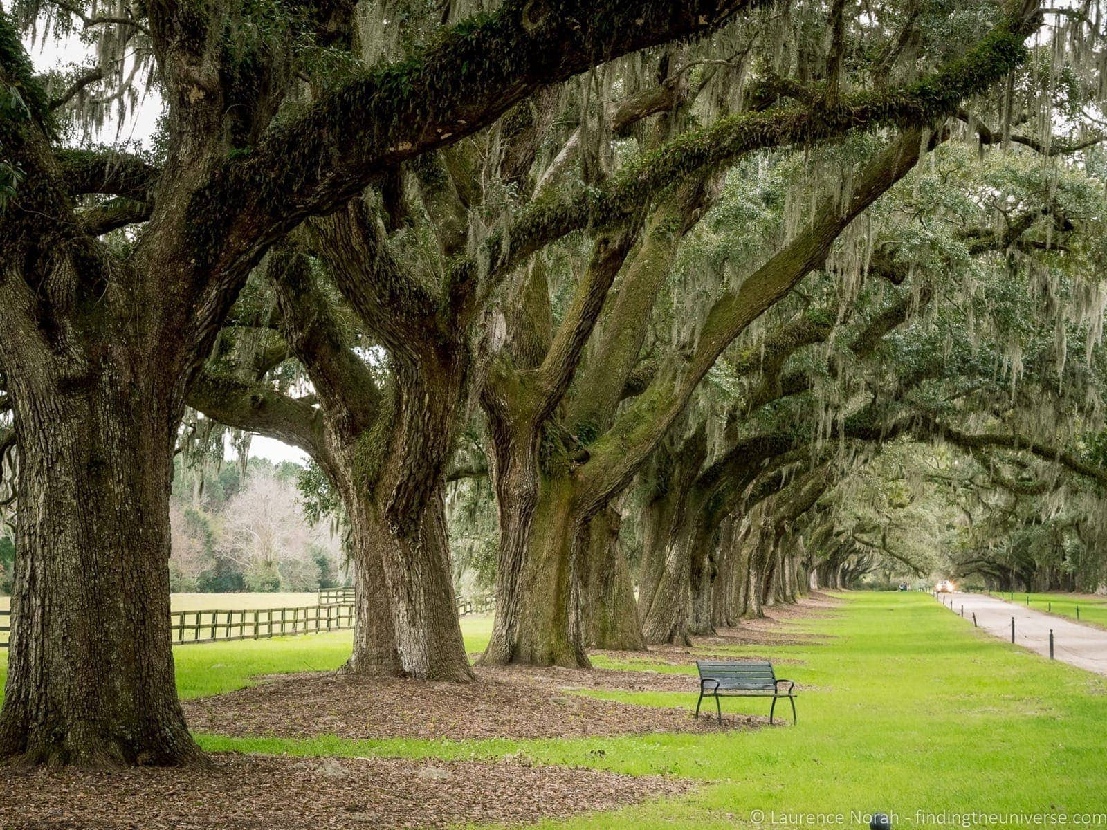 Oak alley Boone Hall plantation Charleston