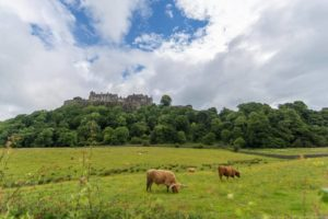 A Scotland Distilleries Tour From Edinburgh with Whisky Tasting!