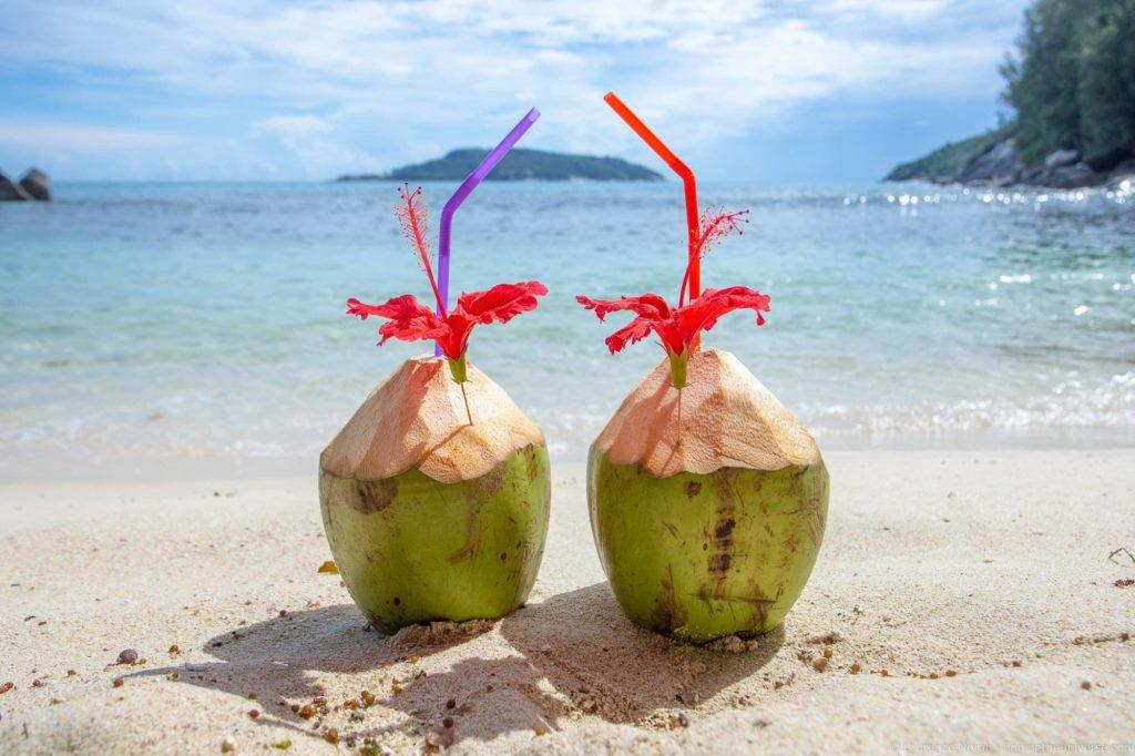 Coconuts on beach Mahe seychelles