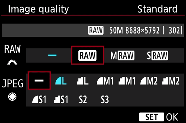 What is RAW in Photography, and why should you shoot in RAW