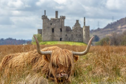 Day trips from Glasgow