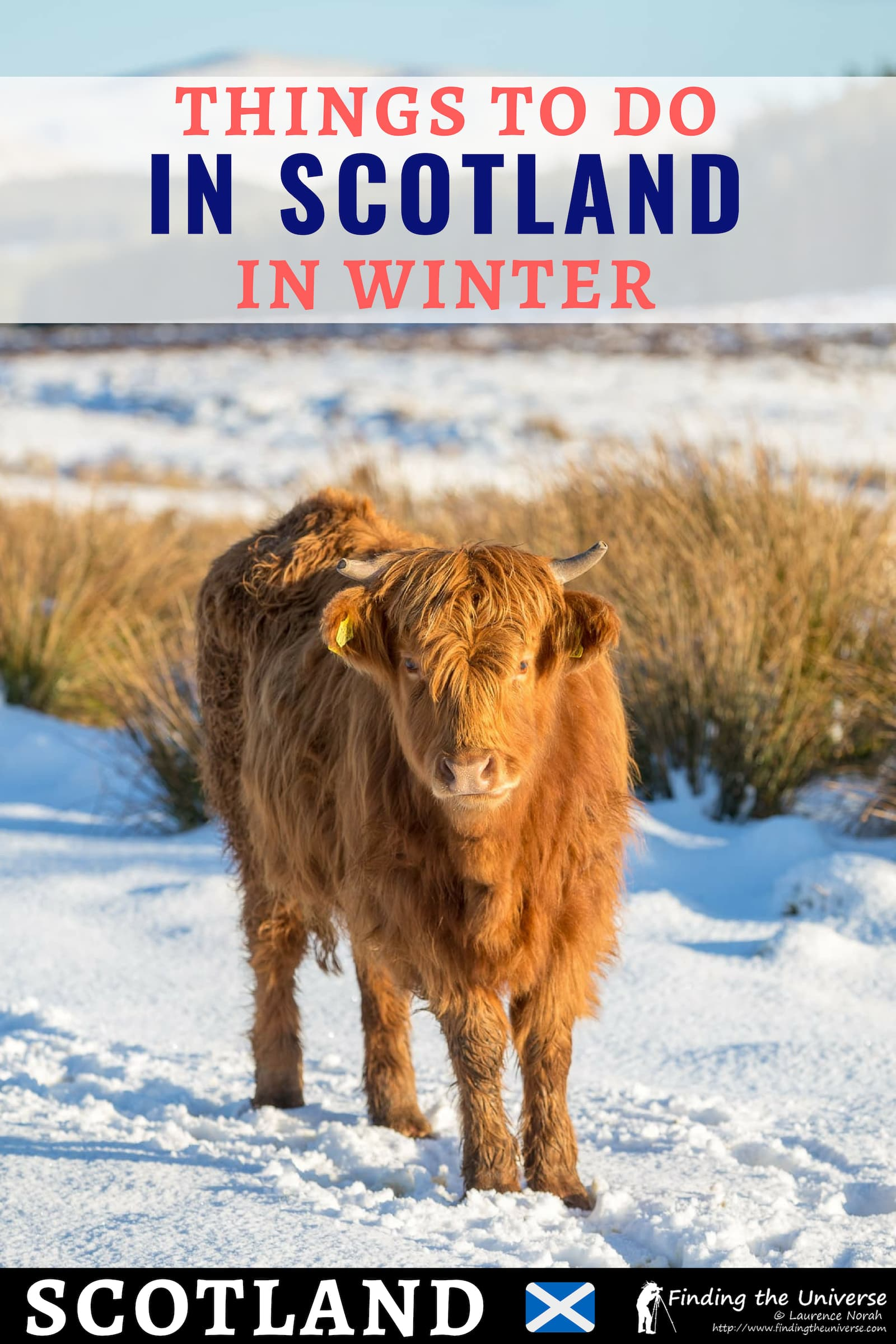 Everything you need to know about visiting Scotland in Winter, from what to do through to what to pack and tips for planning your trip. #travel #scotland #traveltips #uk #winter