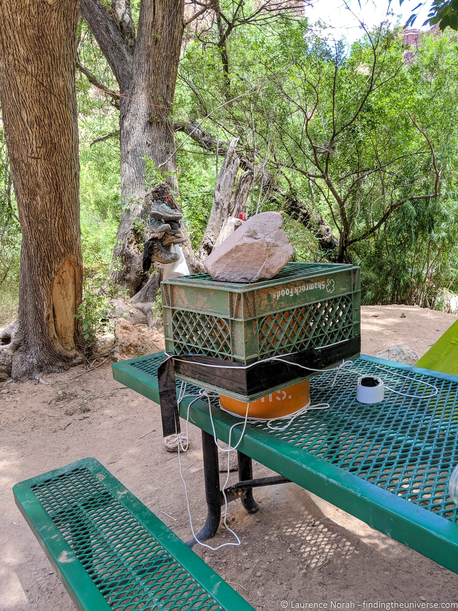 Squirrel protection measures Havasupai