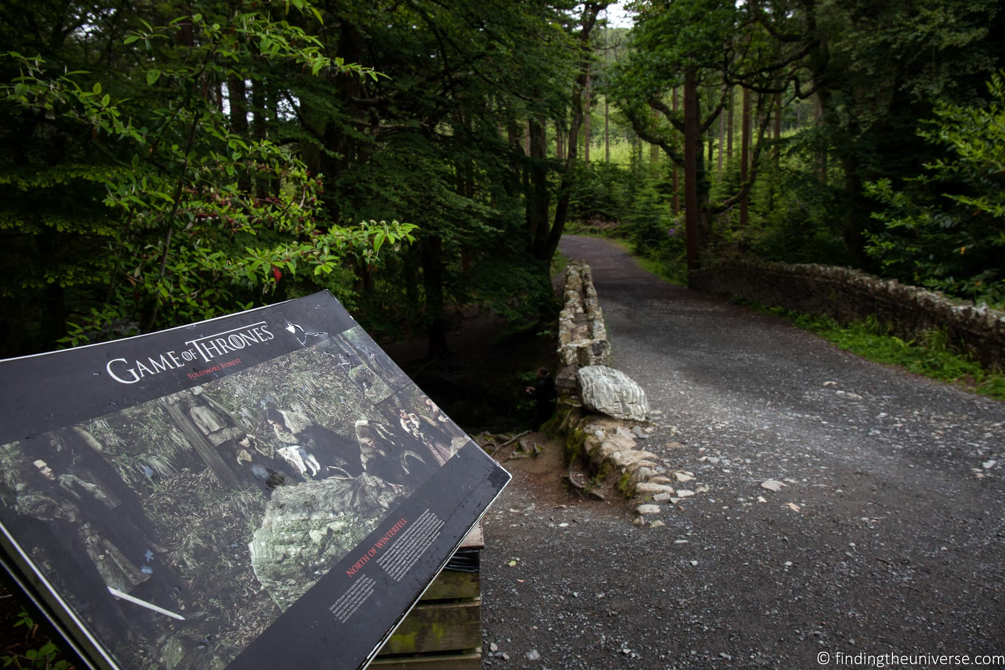Tollymore Forest Park - WInterfell