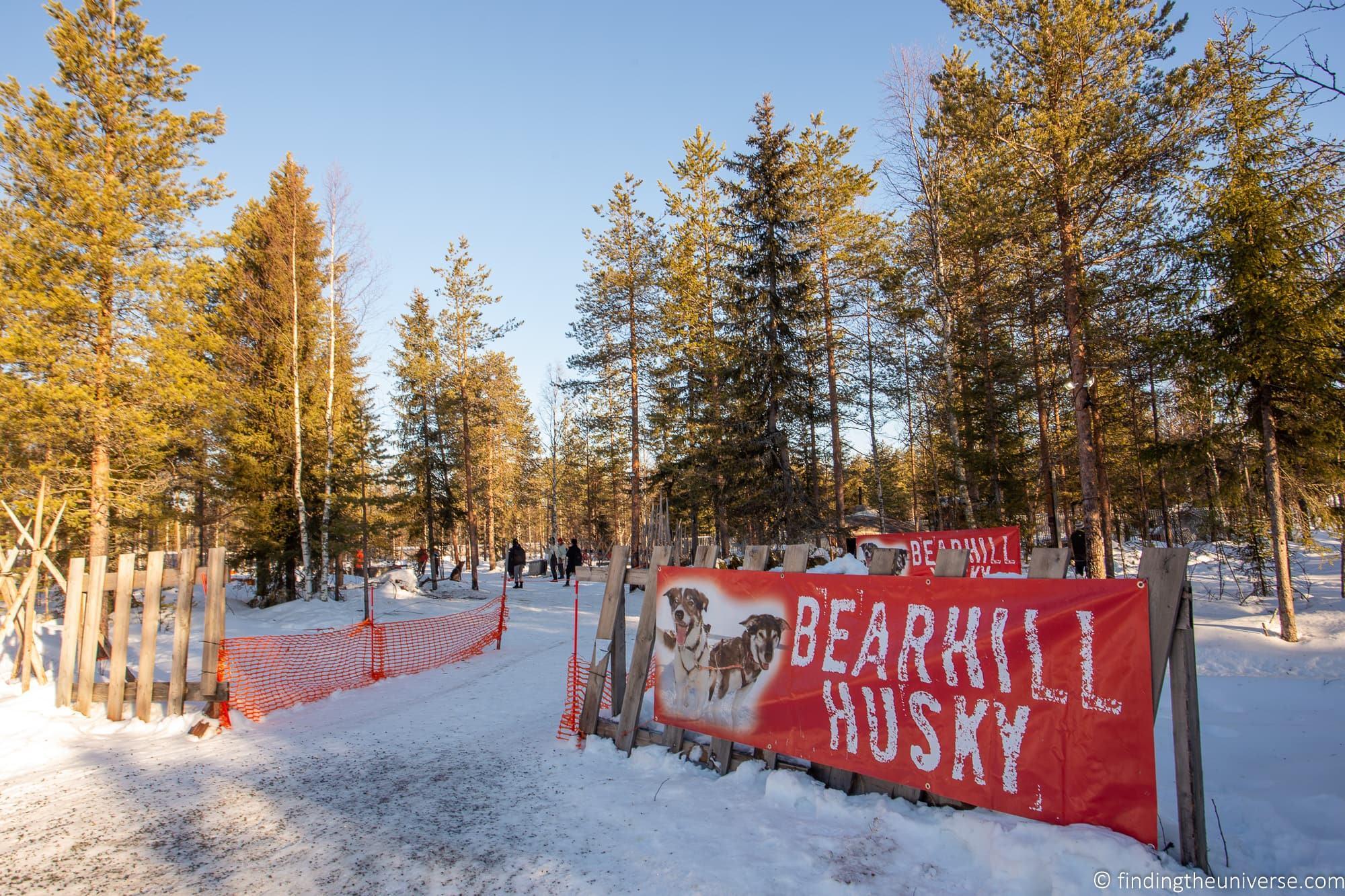 Bearhill husky Rovaniemi