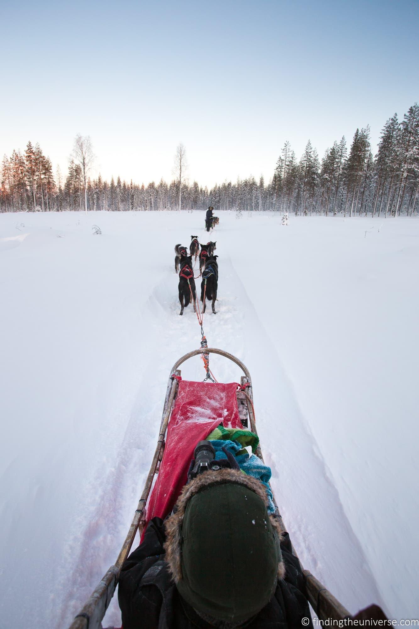 Husky Sledding Rovaniemi