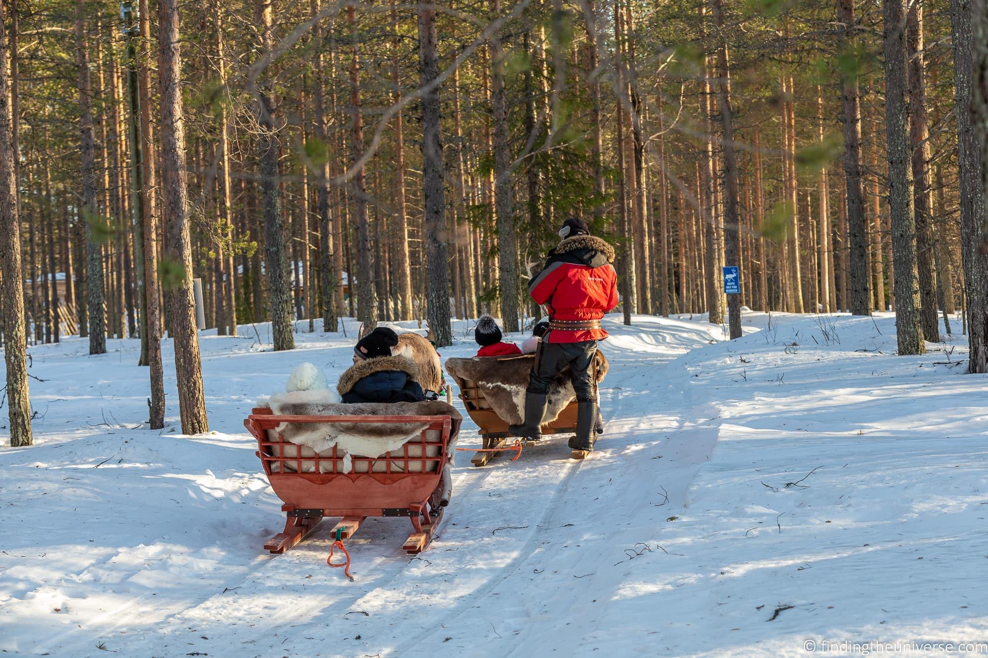 Reindeer sled Rovaniemi