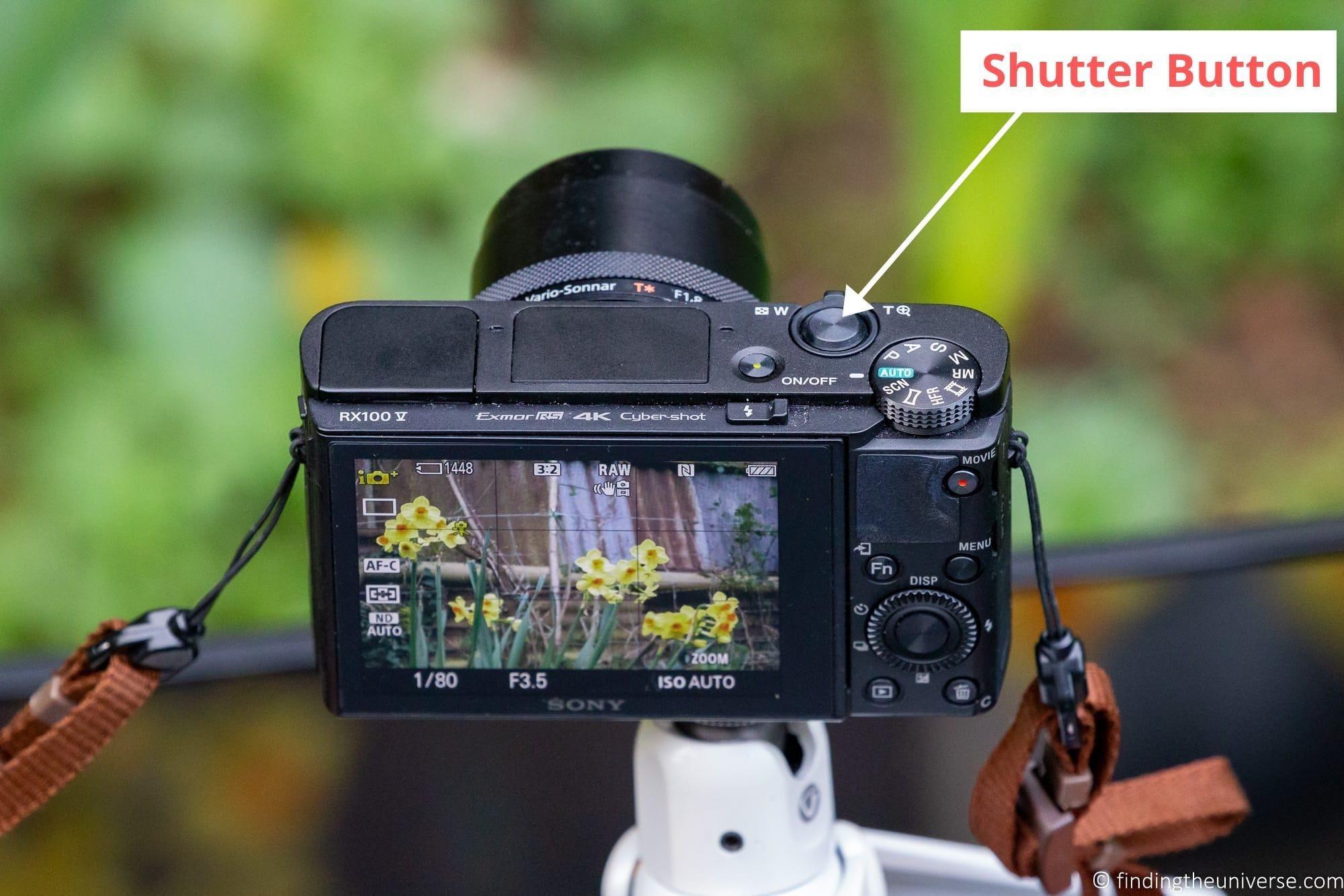 Compact Camera Shutter Button