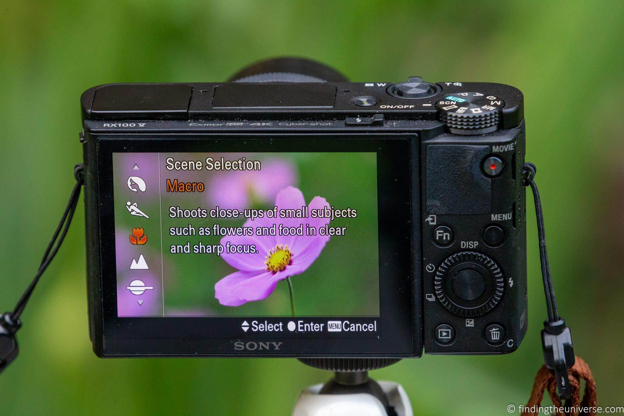 Compact Camera Scene Selection