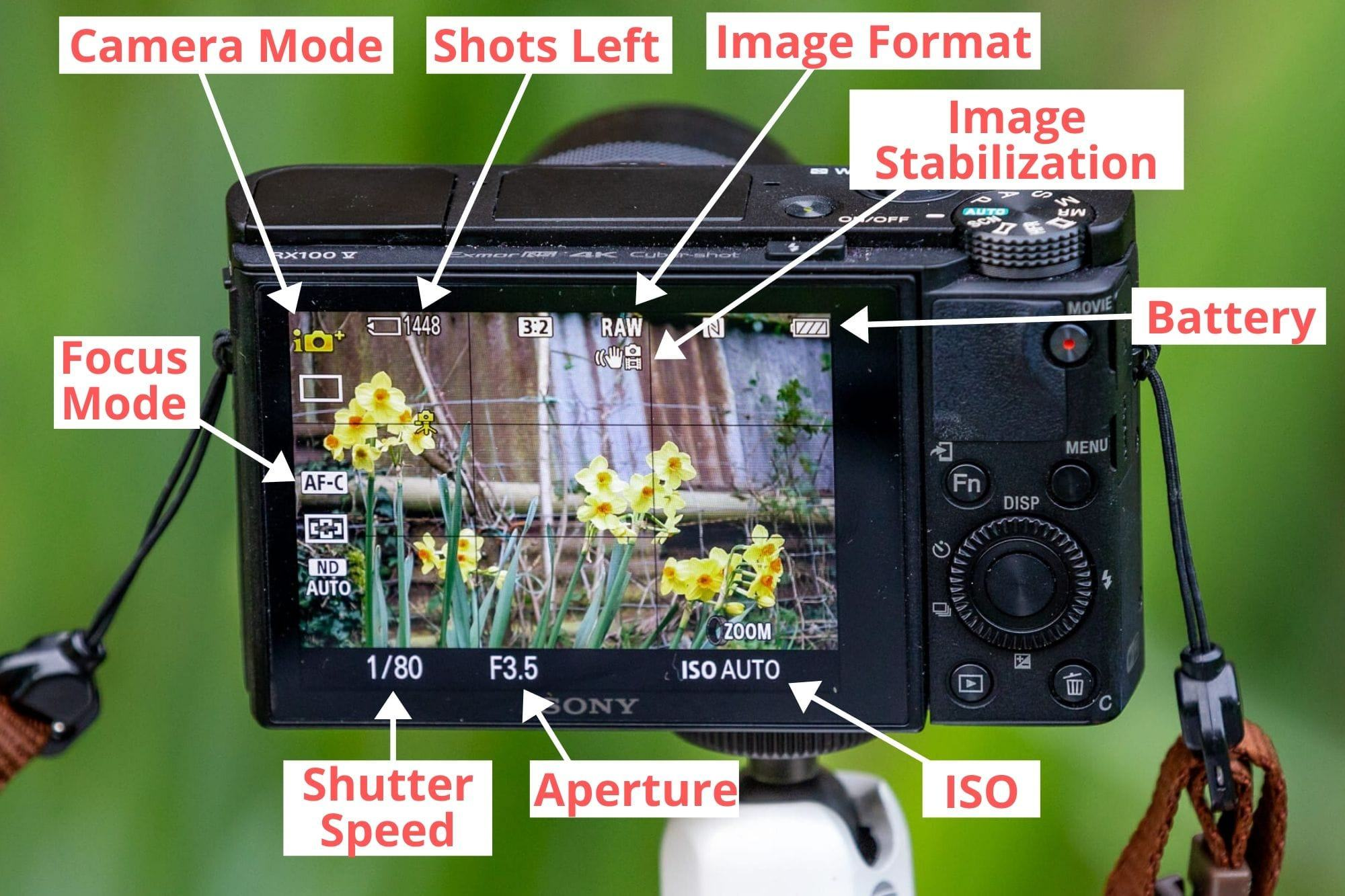 Compact camera on screen display guide