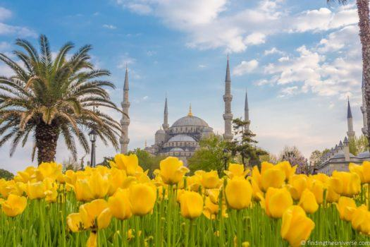 Blue mosque and flowers Istanbul