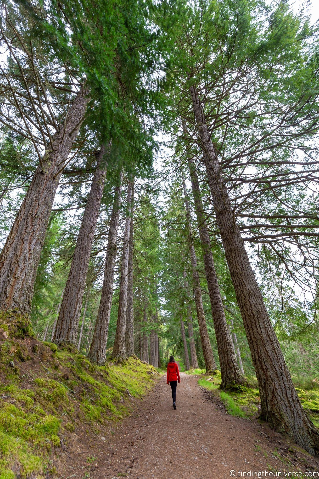 Glen Affric hiking