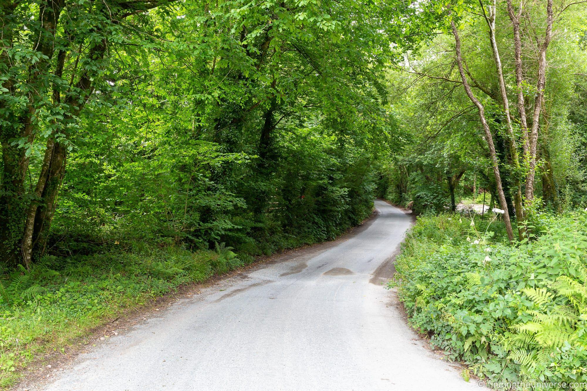 Cornish country lane single track road Cornwall