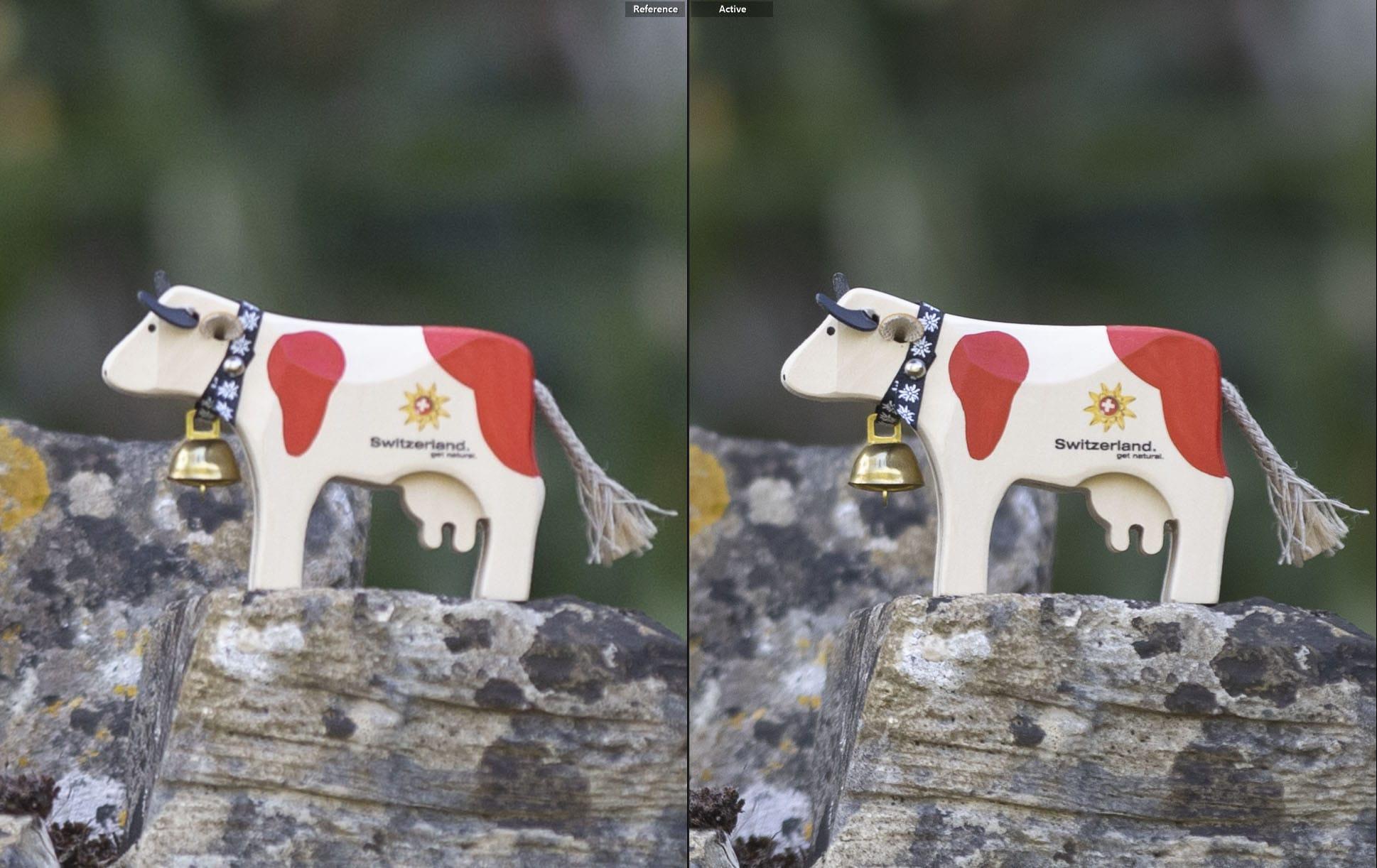 20 megapixel vs 45 megapixel 100 percent crop same zoom