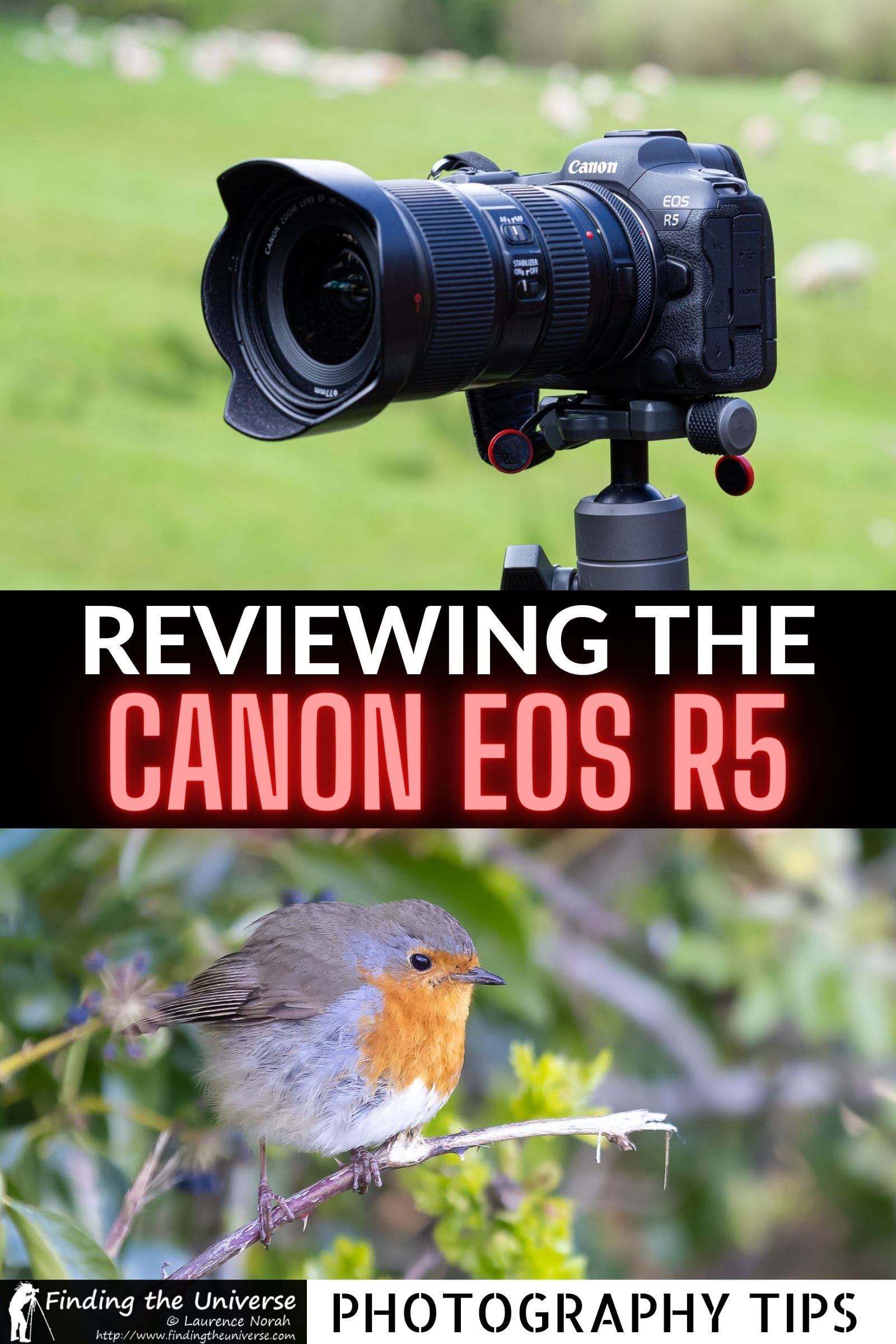 Canon EOS R5 Review. A detailed overview of all the pros and cons of this camera from a professional travel photographer.